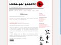 wadokai-webdesign.jpg